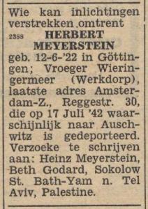 W33 Meijerstein Herbert_03