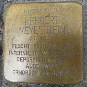 Meijerstein Herbert